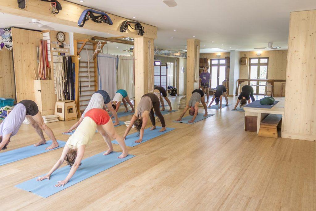 cours-de-yoga-iyengar-avance