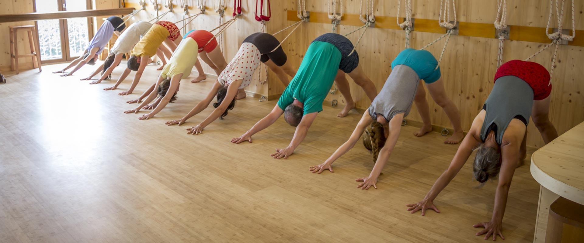 cours yoga iyengar